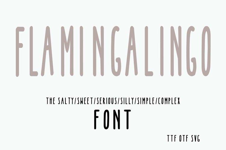 FLAMINGALINGO Font from Shorts and Lemons