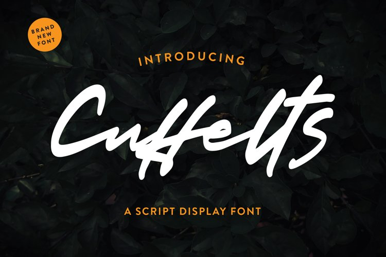 Cuffelts - Script Display Font example image 1