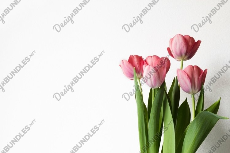 Pink tulips bouquet. example image 1