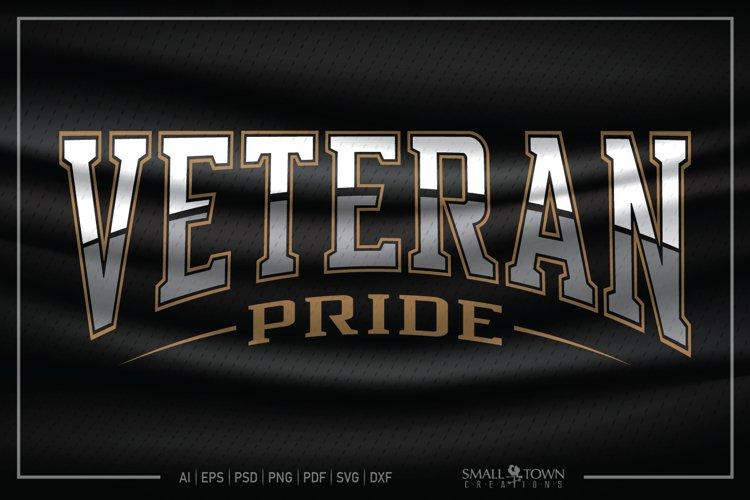 Veteran, Veteran Pride, Military Veteran SVG, Veteran SVG example image 1