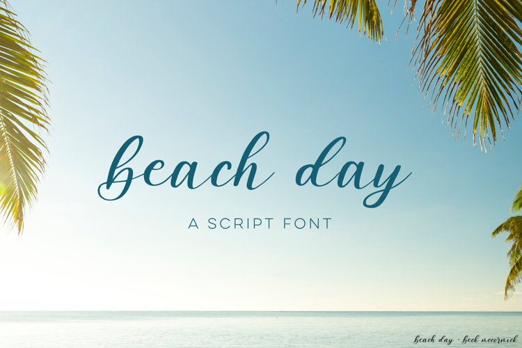 Beach DayScript Font example image 1