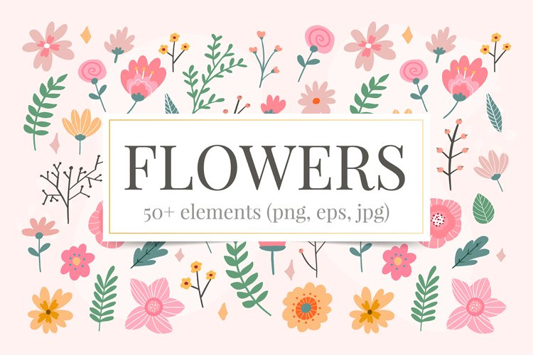 Vector Flower Illustrations Frames example image 1