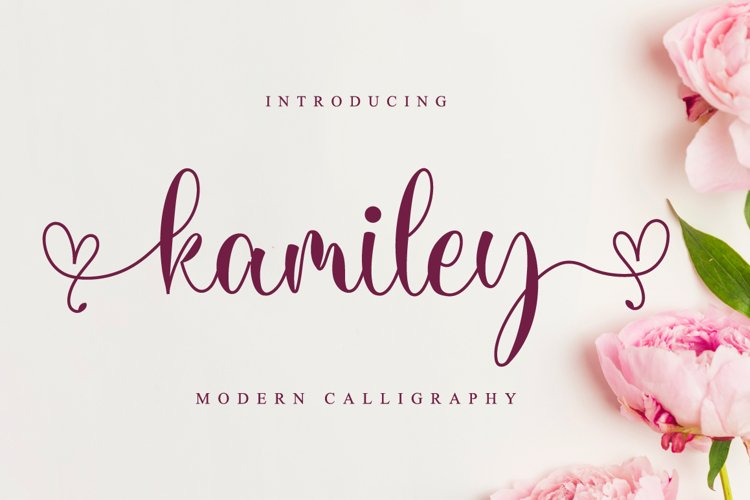 Kamiley // Lovely Script Font example image 1