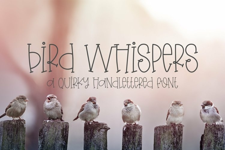 Web Font Bird Whispers - A Quirky Handlettered Font example image 1