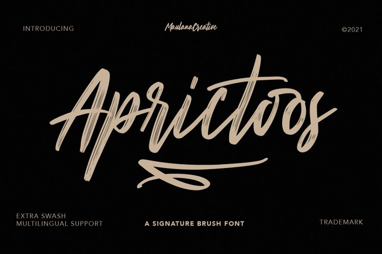 Aprictoos Signature Brush Font example image 1