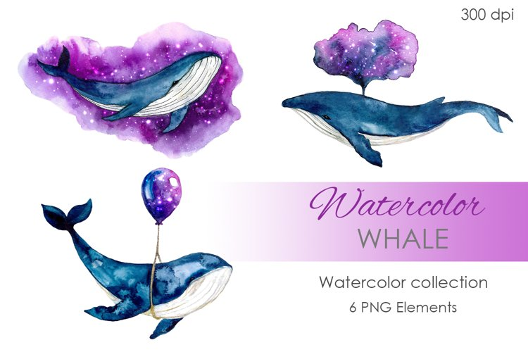 Digital Clipart. Watercolor Whale clipart. Hand painted example image 1