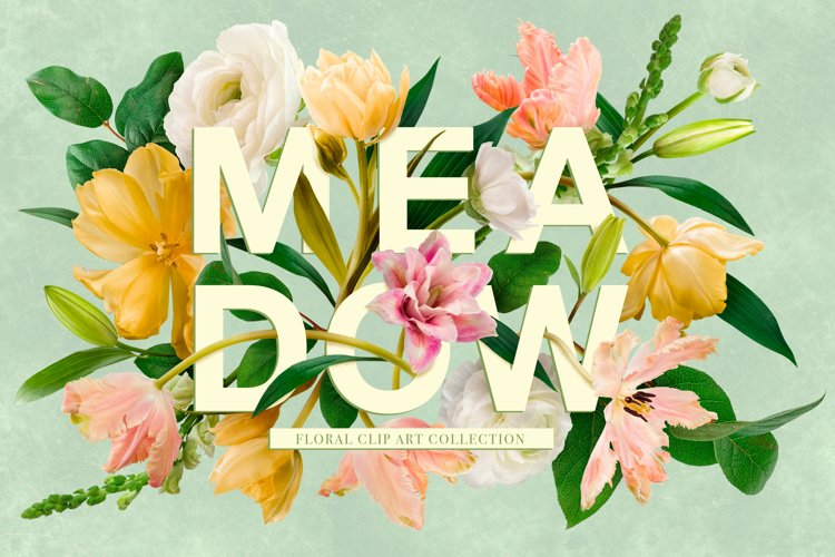 Meadow Floral Clip Art Collection