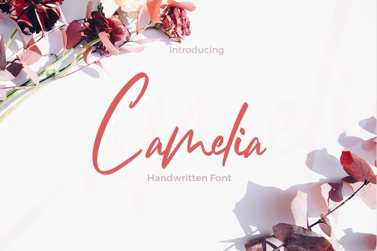 Camelia example image 1