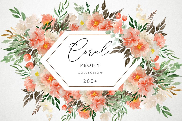 Coral Peony Watercolor Collection