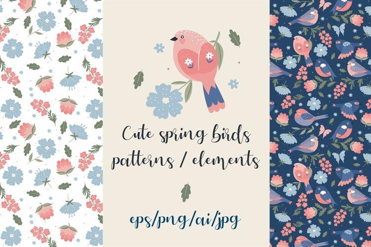 Cute spring birds