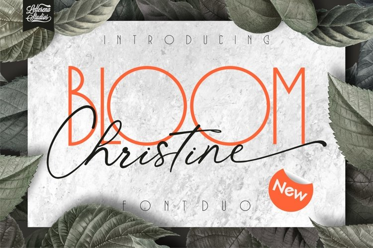 BLOOM Christine - Sans Serif and Signature Font example image 1