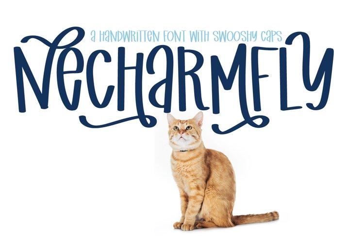 Necharmfly - A Swooshy Marker Font example image 1