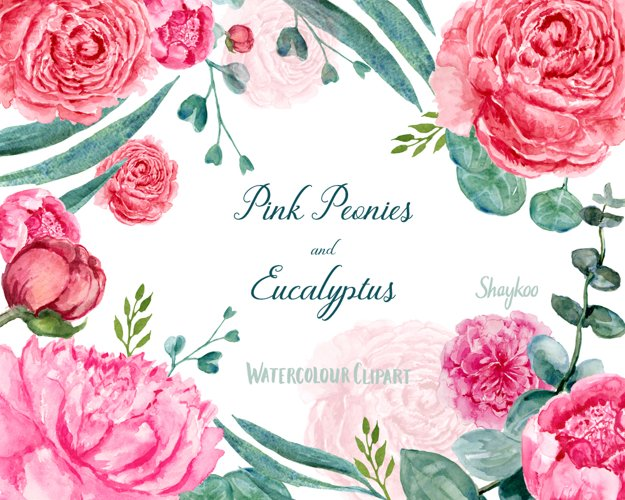Watercolor Peonies and Eucalyptus Clipart, Hand Painted PNG