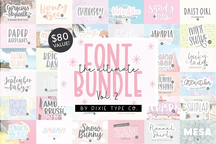 100 FONTS - The ULTIMATE Font Bundle Vol. 2 - Dixie Type Co. example image 1