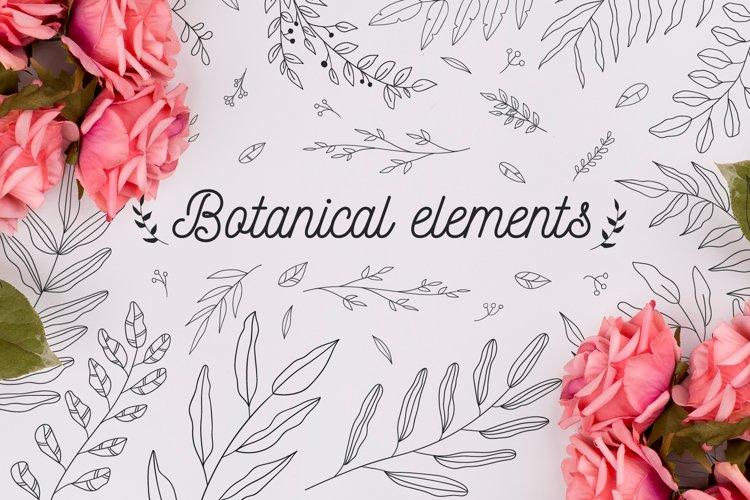 110 Hand-drawn botanical elements example image 1