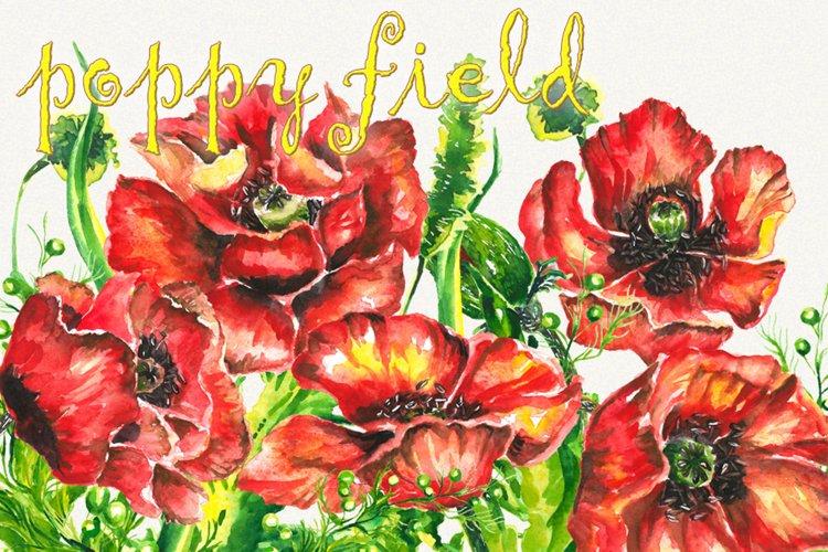 Poppy clipart, Poppy flower clipart, floral elements,