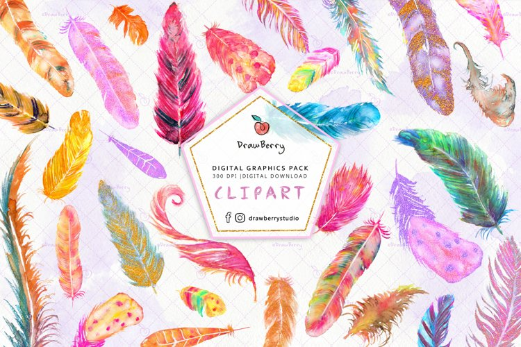 Watercolor Boho Feathers Clipart | Drawberry CP063 example image 1