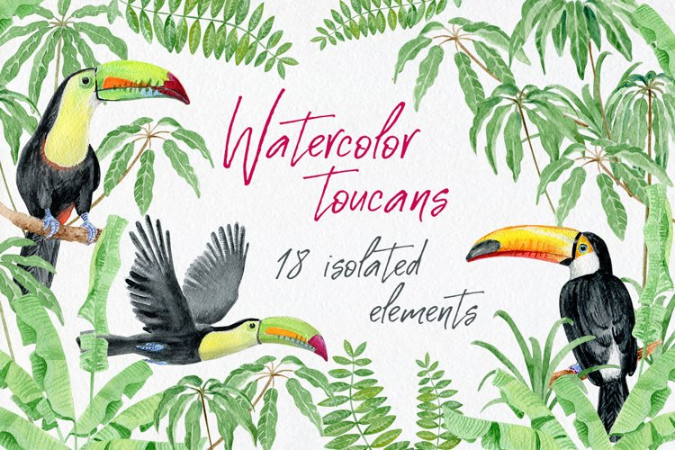 Watercolor toucans and tropical leaves example image 1