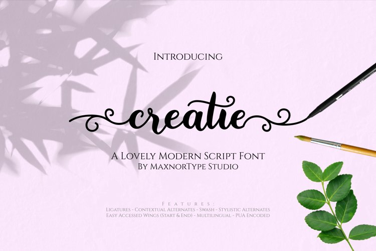 Creatie - A Lovely Modern Script Font example image 1