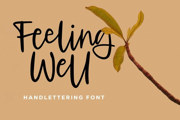 Web Font Feeling Well - Handlettering Font example image 1