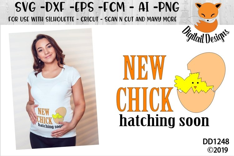 Easter Maternity New Chick Hatching SVG Cut File example image 1