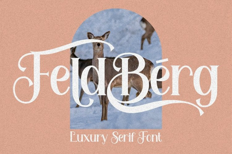 Feldberg - Elegant Luxury Serif Font example image 1