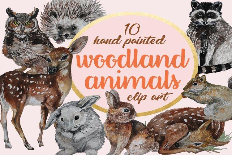 Woodland Animals Hand painted Clip Art Set