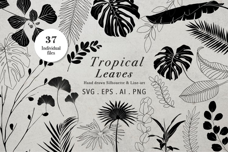 Tropical Leaves Silhouttes & Line Art SVG