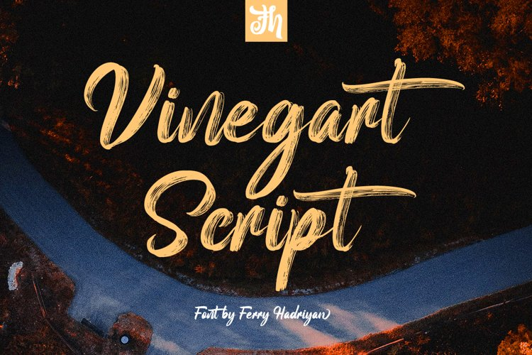 Vinegart - Handwritten Font example image 1