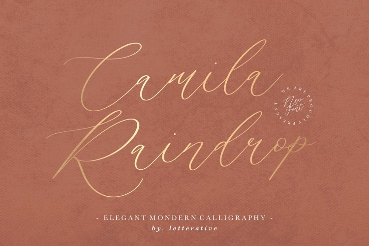 Camila Raindrop Elegant Modern Calligraphy Font example image 1
