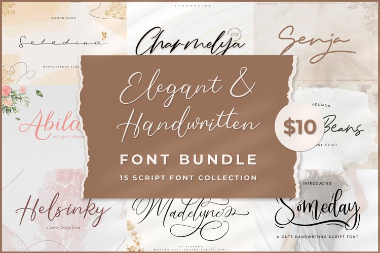 Elegant & Handwritten Font Bundle example image 1