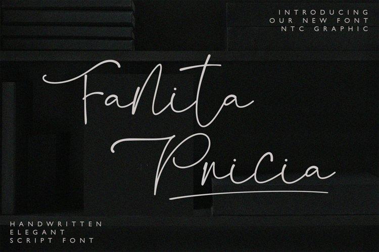 Fanita Pricia - Elegant Script Font example image 1