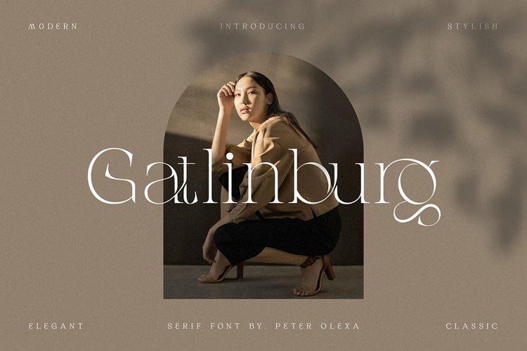 Gatlinburg - Modern Serif Font example image 1