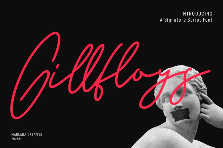 Gillfloys Signature Font example image 1