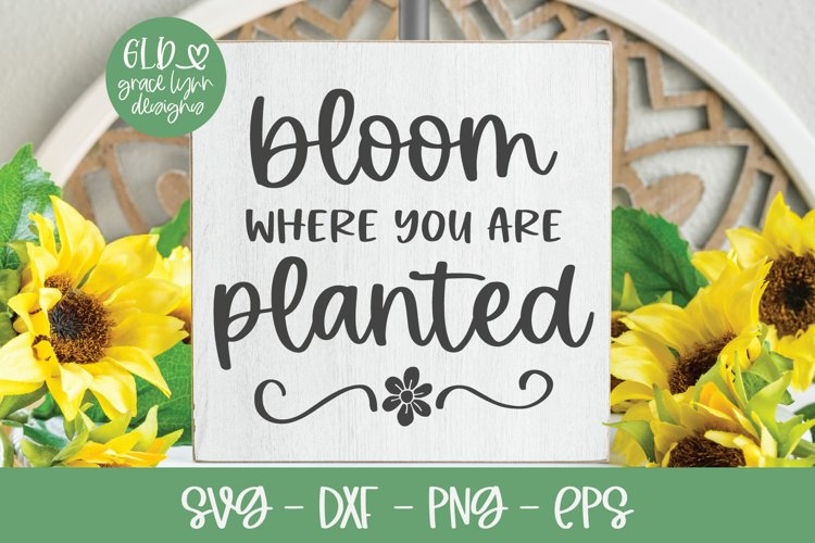 Bloom Where You Are Planted - Garden SVG