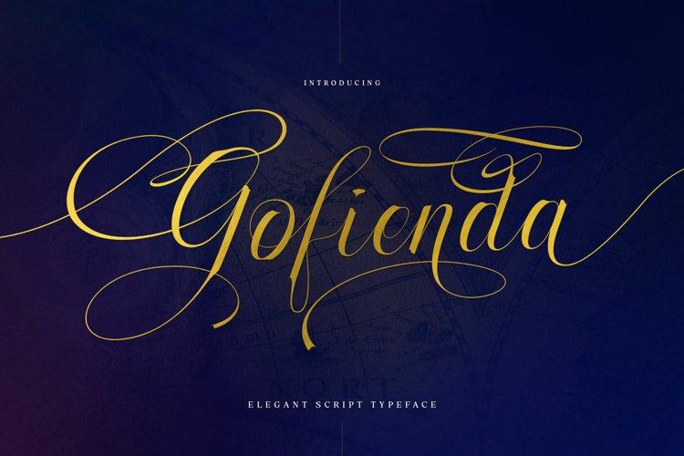 Gofienda example image 1