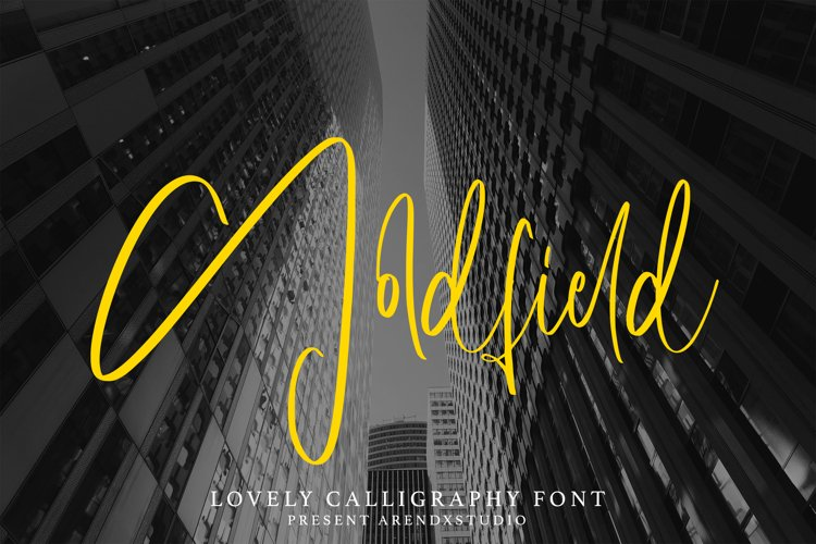 Goldfield - Lovely Calligraphy Font example image 1