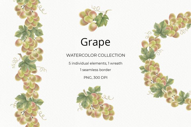 Grape. Watercolor clipart