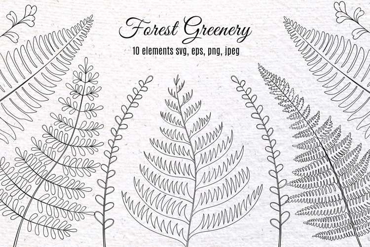 Forest Greenery Clipart. Fern. PNG, SVG, EPS
