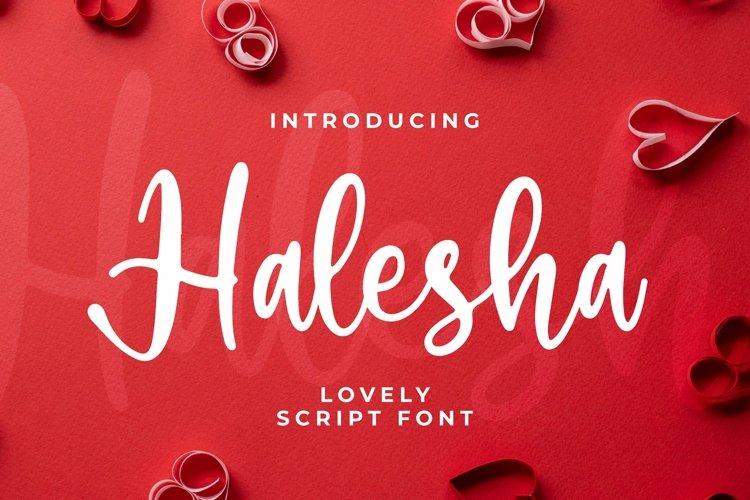 Web Font Halesha Font example image 1