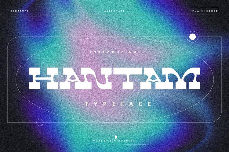 Hantam example image 1
