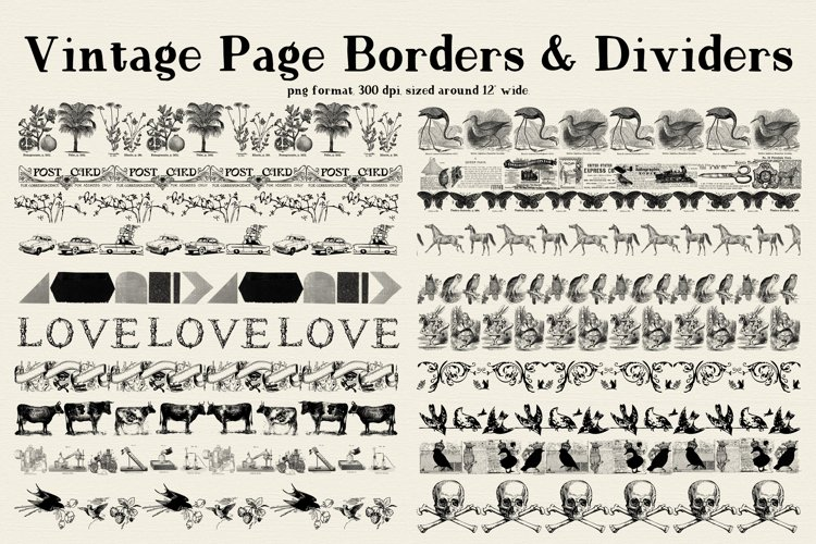 Vintage Borders and Dividers PNG Files