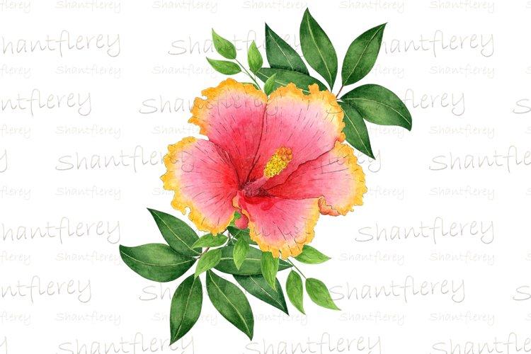 Hibiscus Sublimation, Floral Tropical Sublimation, Tropical