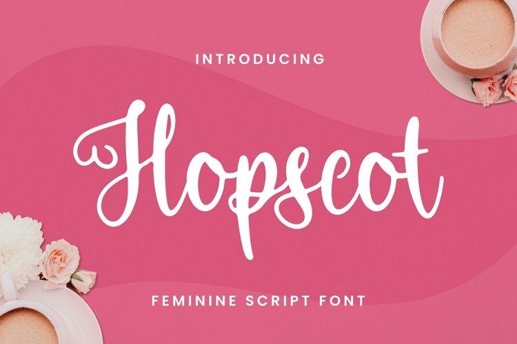 Web Font Hopscot Font example image 1