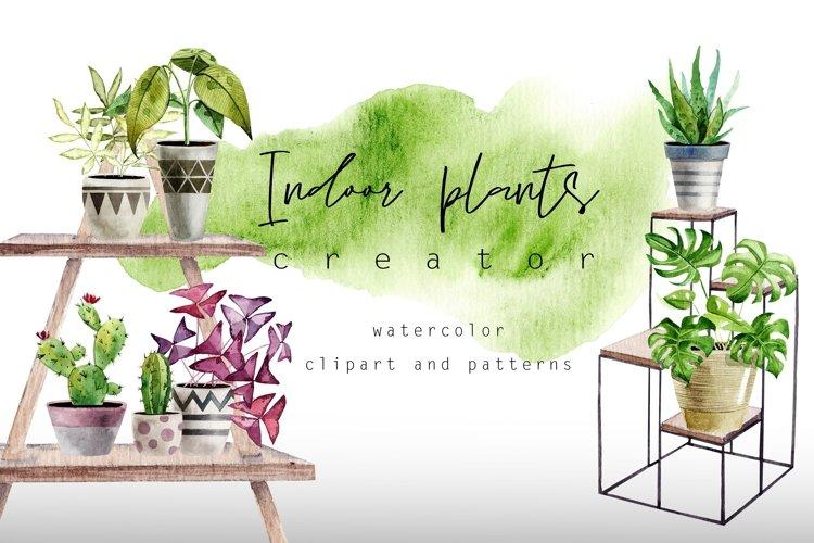 Indoor plants - houseplants watercolor