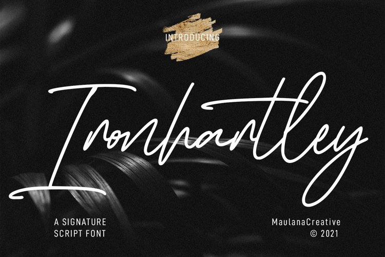 Ironhartley Script Font example image 1