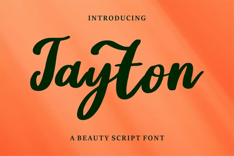 Web Font Jayton - A Beauty Script Font example image 1