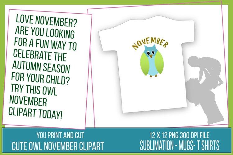 November Clipart - Cute Owl - 12x12 png Transparent
