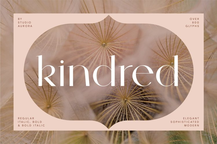 Kindred - Elegant and chic font example image 1