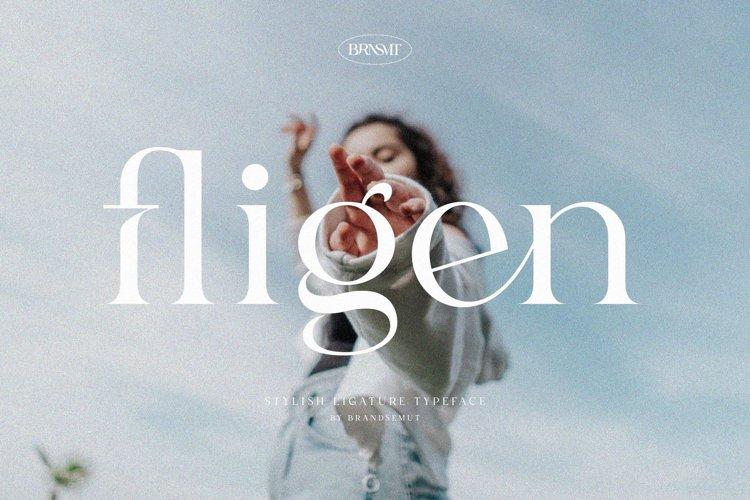 Fligen - Stylish Serif example image 1
